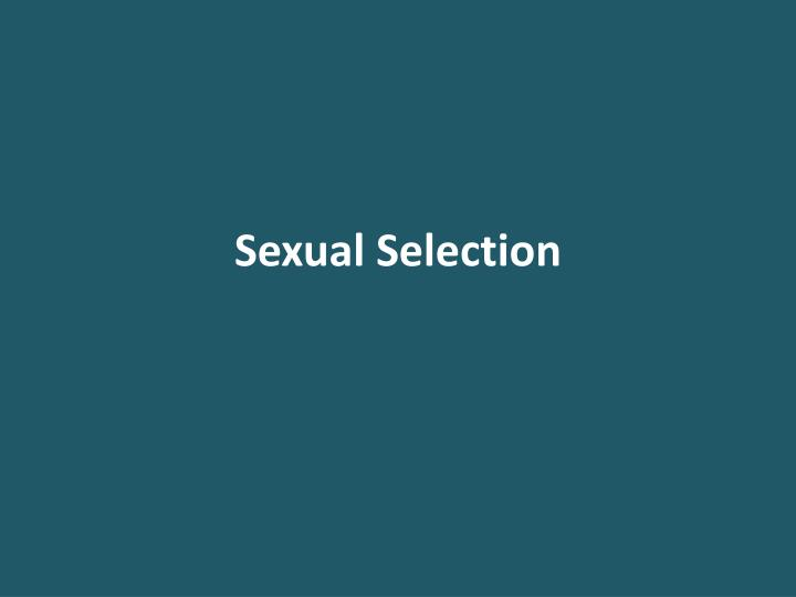sexual selection n.