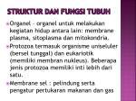 struktur dan fungsi tubuh