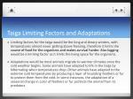 taiga limiting factors and adaptations