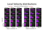 local velocity distributions