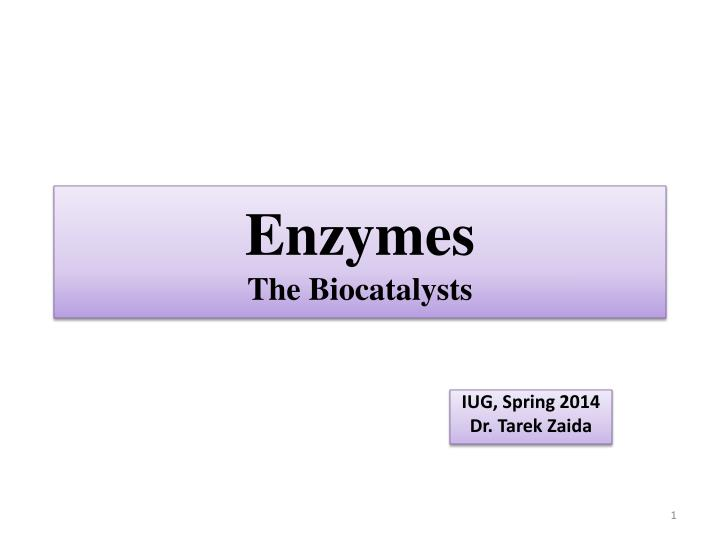 enzymes the biocatalysts n.