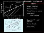 low mass protostellar tracks