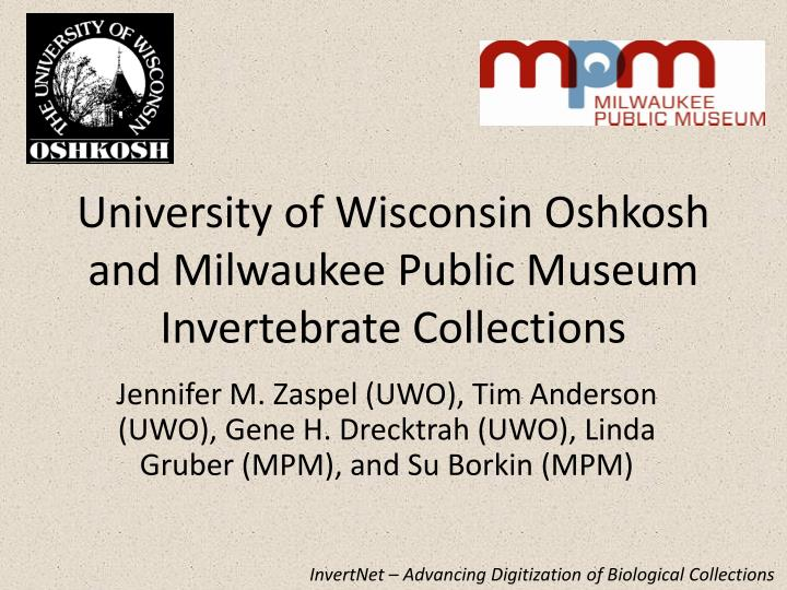 university of wisconsin oshkosh and milwaukee public museum invertebrate collections n.