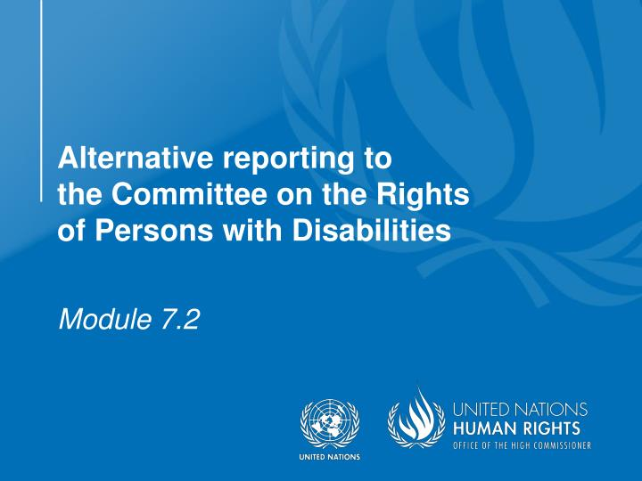 alternative reporting to the committee on the rights of persons with disabilities n.