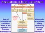 regulation of body water gain