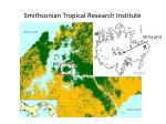 smithsonian tropical research institute2
