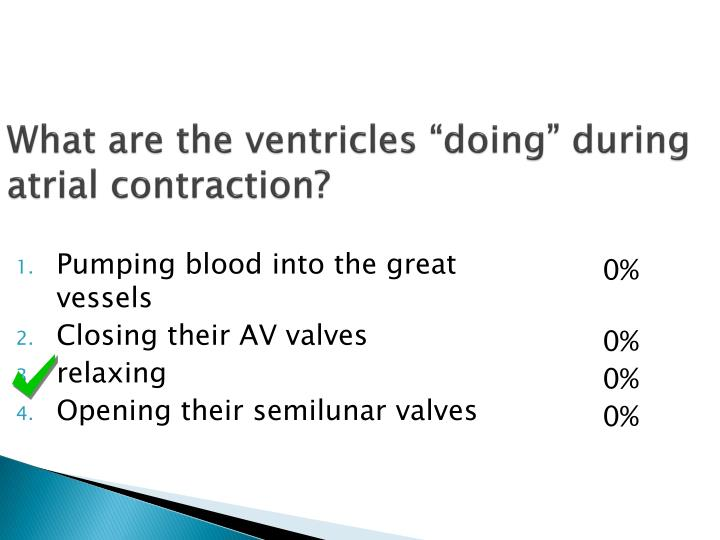 What are the ventricles doing during atrial contraction