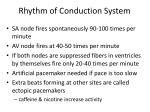 rhythm of conduction system