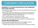 coronary circulation2