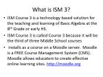 what is ism 3