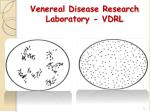 venereal disease research laboratory vdrl