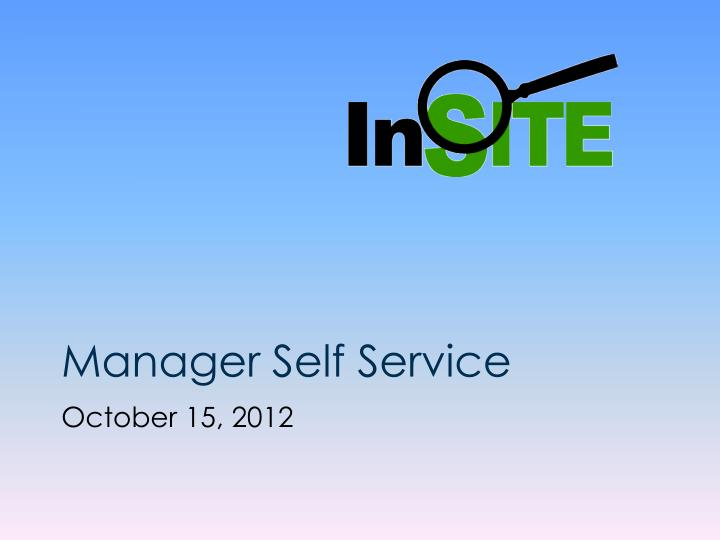 manager self service n.