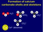 formation of calcium carbonate shells and skeletons1