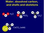 water dissolved carbon and shells and skeletons