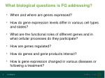 what biological questions is fg addressing