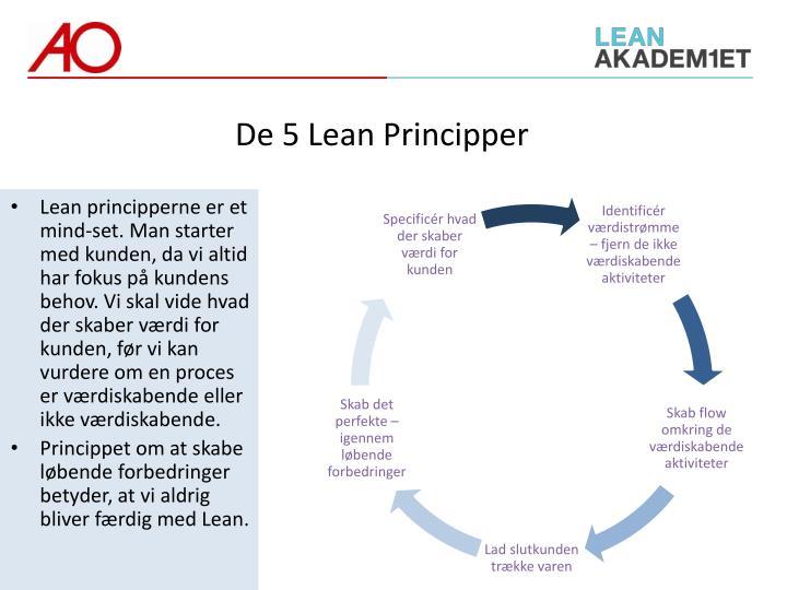 De 5 Lean Principper