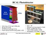 bcal photodetector