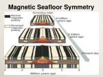 magnetic seafloor symmetry