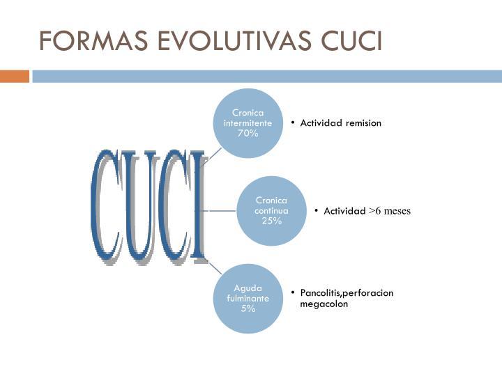 FORMAS EVOLUTIVAS CUCI