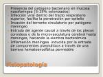 fisiopatolog a