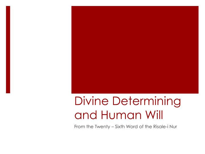 divine determining and human will n.