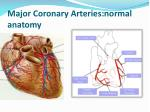 major coronary arteries normal anatomy