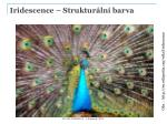 iridescence struktur ln barva2