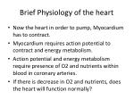 brief physiology of the heart1