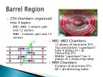 barrel region