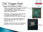 csc trigger path trigger motherboard tmb