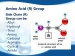 amino acid r group