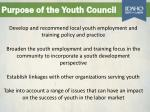 purpose of the youth council