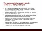 the anterior pituitary secretes six hormones many are tropic