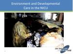 environment and developmental care in the nicu