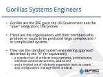 gorillas systems engineers