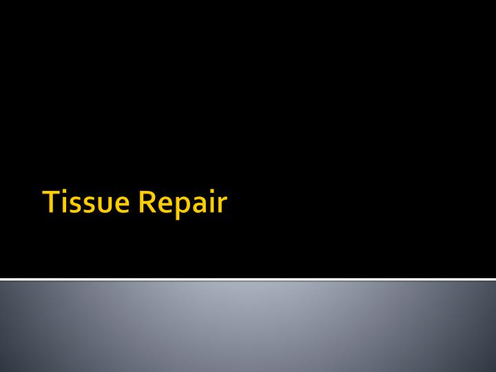 tissue repair Tissue repair mechanotherapy and why it's important for clinicians in this great bjsm podcast with professor karim khan , he explains that all exercise-based rehabilitation relies on the cells of the injured tissue sensing the exercise stimulus, converting that signal to protein synthesis, and repairing tissue - referred to as.