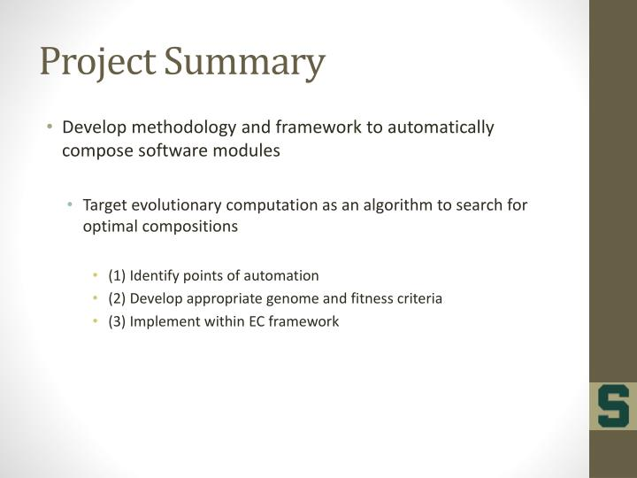 project summary n.