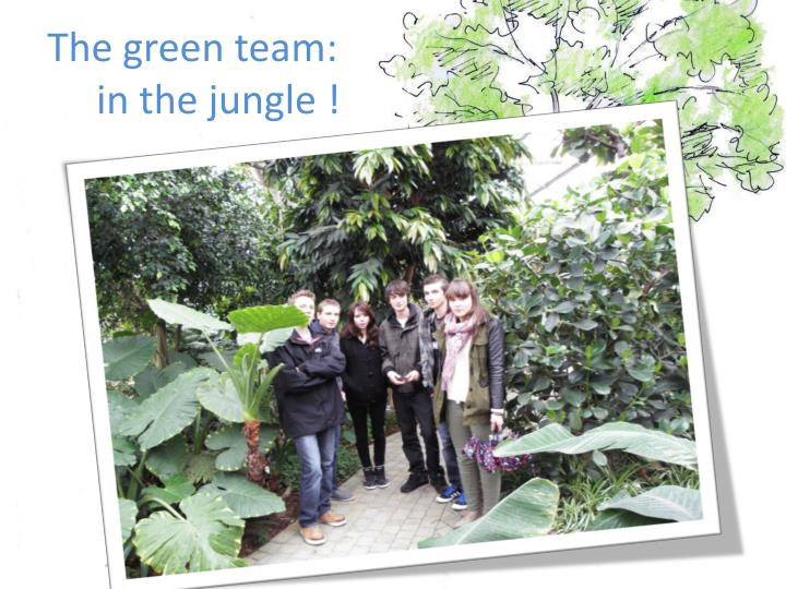 The green team: