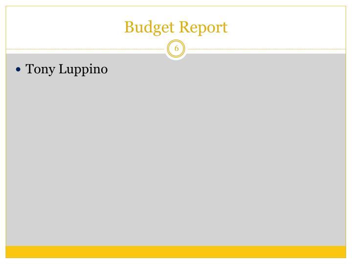 Budget Report