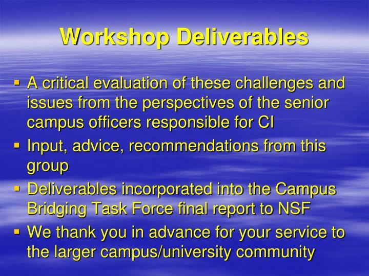 Workshop Deliverables