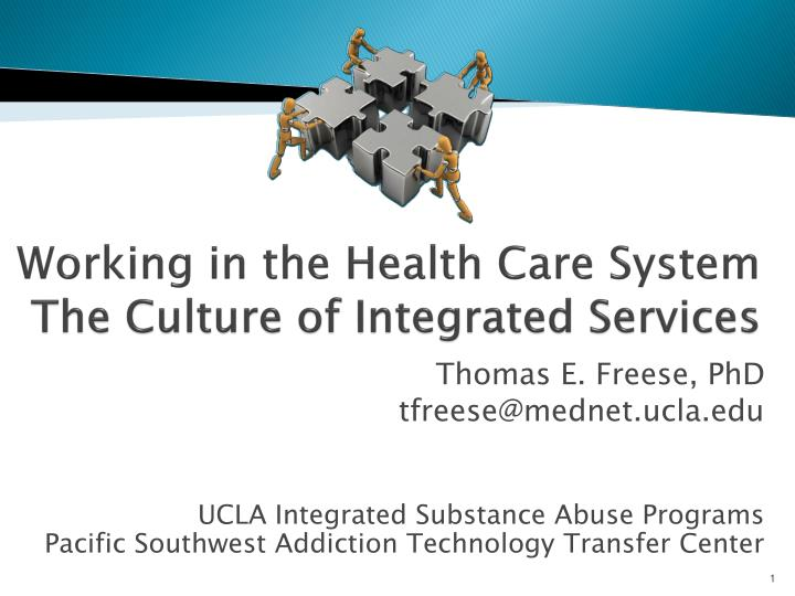 working in the health care system the culture of integrated services n.