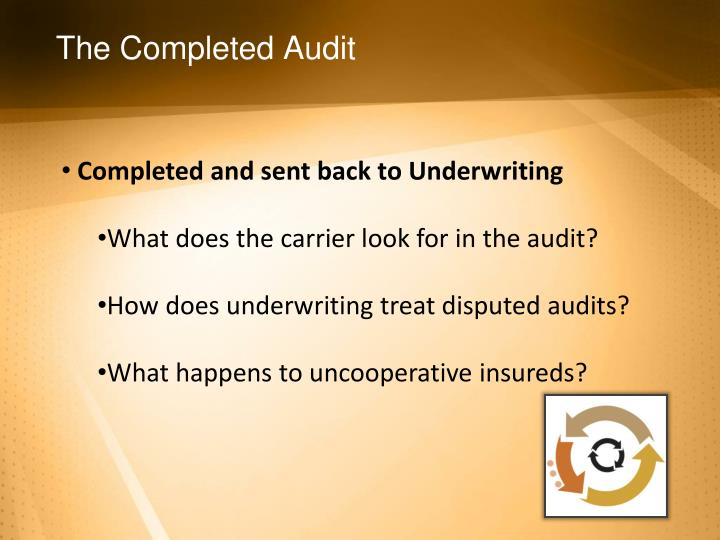 The Completed Audit