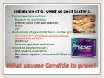 what causes candida to grow