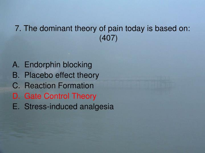 7. The dominant theory of pain today is based on: (407)