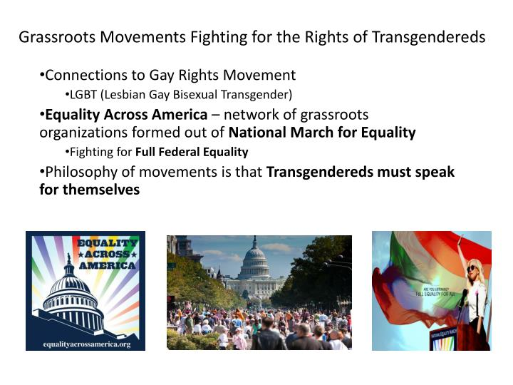 grassroots movements fighting for the rights of transgendereds n.