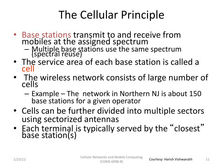 The Cellular Principle