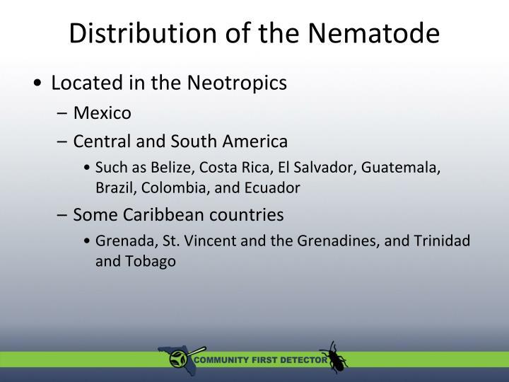 Distribution of the Nematode