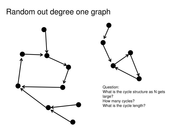 Random out degree one graph