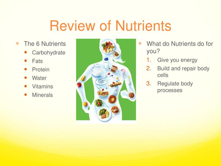 Review of nutrients1