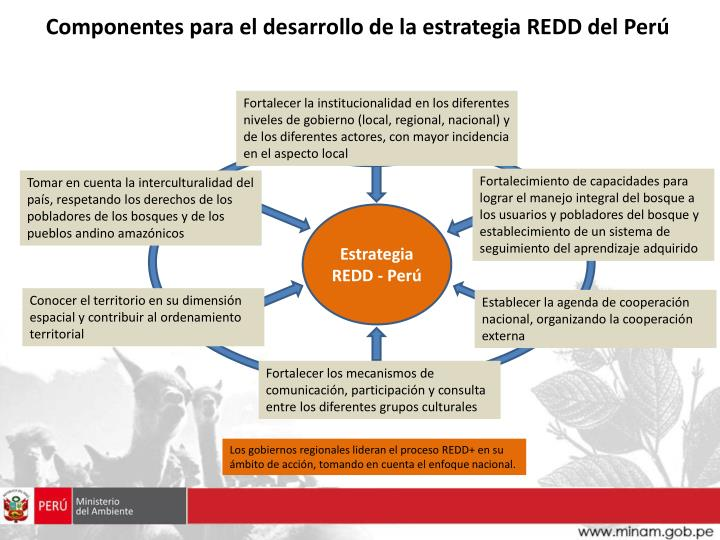 Componentes para el desarrollo de la estrategia REDD del Perú